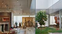 20 mẫu thiết kế vườn trong nhà tuyệt đẹp