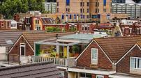Khu vườn đầy màu sắc trên sân thượng giữa thành phố