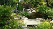 Sân vườn sống động với những hồ nước nhỏ xinh
