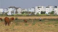Tp. Hồ Chí Minh: Đề nghị giảm hệ số điều chỉnh giá đất