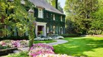 Những lời khuyên giúp sân vườn đẹp lung linh