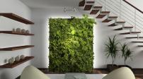 9 ý tưởng giúp nhà chật sở hữu vườn treo đẹp như tranh vẽ