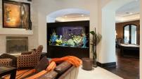 8 vị trí lý tưởng để đặt bể cá trong nhà