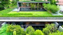 Wall House - ngôi nhà xanh giữa lòng thành phố