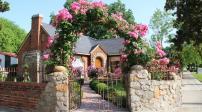 Cổng nhà có hoa hồng leo lãng mạn