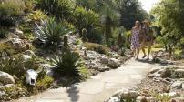 Khu vườn bát ngát của cặp vợ chồng yêu cây nhất nước Anh