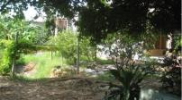 Xét cấp sổ đỏ cho đất ở khi có nhà và vườn ra sao?