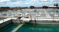 Hà Nội: Chuyển đổi 15ha đất trồng lúa, xây Nhà máy nước mặt sông Hồng
