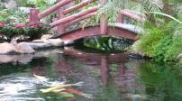Cách thiết kế cầu nhỏ tạo nét đẹp cho sân vườn