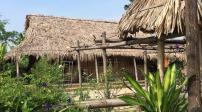 Hà Nội: Xử lý công trình trái phép tại bãi giữa sông Hồng
