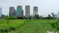 Hỏi về việc chuyển nhượng đất trong quy hoạch