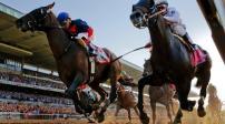 Vĩnh Phúc: Chấp thuận xây dựng dự án trường đua ngựa