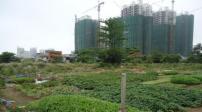 Thực hiện dự án điều tra, đánh giá đất đai tại Tp.HCM