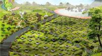 Hà Nội: Quy hoạch xây dựng khu công viên nghĩa trang xanh