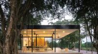 Ngôi nhà có thiết kế đẹp ẩn mình giữa vườn cây Hà Nội