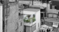 Khu vườn sinh thái thiết kế độc đáo trên nóc nhà