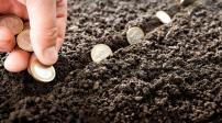 Quy định việc nộp tiền sử dụng đất