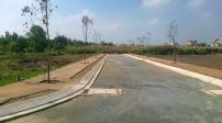 Cơn sốt đất nền tăng cao,  Phó Chủ tịch UBND Tp.HCM yêu cầu kiểm tra ngay