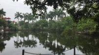 Hà Nội: Không cho phép hợp thức hóa đất ao hồ lấn chiếm tại huyện Sóc Sơn
