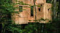 Khám phá ngôi nhà trên cây sang trọng ở Anh