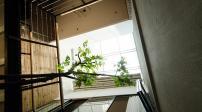 Ngôi nhà 46m2 tuyệt đẹp ở Hà Nội được lên báo ngoại
