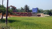 Hà Nội: Xử lý các trường hợp vi phạm đất nông nghiệp
