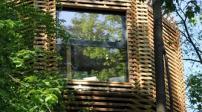 Ngôi nhà gỗ được thiết kế độc đáo trên cây sồi trăm tuổi