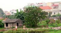 Đất vườn có được chuyển đổi thành đất thổ cư?