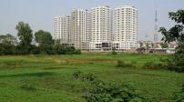 Tp.HCM: Chuyển đổi 1/3 diện tích nông nghiệp sang đất đô thị