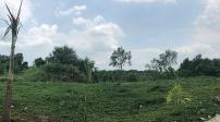 Tp.HCM: Lãng phí hàng loạt nhà đất công