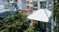 Ngôi nhà rợp bóng cây như chiếc ô xanh khổng lồ ở Sài Gòn