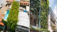 Ngôi nhà phủ kín cây leo ở Sài Gòn, thách thức kẻ trộm