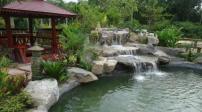 Thiết kế sân vườn mang lại những lợi ích gì?