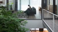 Ngôi nhà đầy nắng nhờ cửa kính lớn ở cả 3 mặt tường