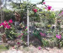 Đất vườn giá rẻ Nhà Bè 500m2 giá chỉ 1,5tr/m2