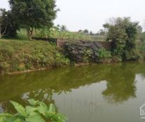 Bán 1800m2 (5 sào) đất thổ cư tại xóm Lập Thành, xã Đông Xuân, Quốc Oai, Hà Nội