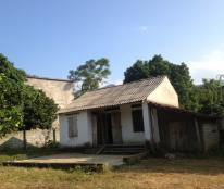 Bán 4 sào đất thổ cư tại Hợp Hòa, LS, HB. Gía 400 triệu