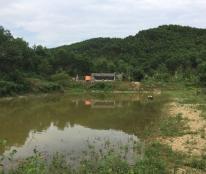 Bán 8 Ha - 42 Ha đất tại xã Trường Sơn, Lương Sơn, Hoà Bình.