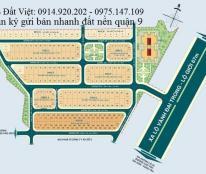 Bán đất nền dự án tại Hưng Phú 1, Quận 9, khu dân cư vị trí đẹp Phước Long B