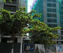 """Chủ đầu tư đang thanh lý các căn hộ ngay vị trí biển vàng Nha Trang """" Mường Thanh Viễn Triều """""""