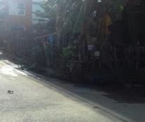 Đất Nền Biệt Thự 2 Mặt Tiền Đường 6 KDC Phú Nhuận-Hiệp Bình Chánh