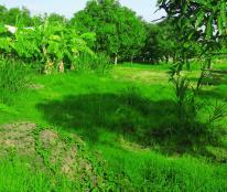 Bán 1800m2 đất vườn xã Quy Đức Bình Chánh chỉ 1,7tr/m2 . 0903078370