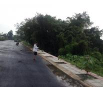 Bán đất dự án biệt thự, liền kề diện tích 1,6 hecta cách sân bay Tân Sơn Nhất 3.6 km