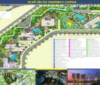 Chỉ cần hơn 1 tỷ sở hữu ngay căn hộ chung cư cao cấp tại dự án D' Capitale Trần Duy Hưng