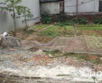 Bán 2 lô Đất Thổ cư kề nhau, Văn Quán-Yên Xá (34m2),39tr/m2. ngõ 2,7m.01235235694