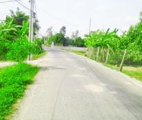 Bán768m2 đất mặt tiền đường Nguyễn Văn Tời Bình Chánh