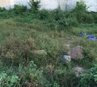 Đất 1,8 tỷ ngay bệnh viện Bình Tân Hương Lộ 2 - Mã Lò