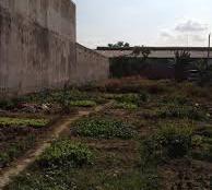 Đất Hương Lộ 2, hẻm thông 8m ODT, khu dân cư cao cấp