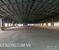 Cho thuê kho, nhà xưởng, đất tại Bình Giang, Hải Dương giá 39 Nghìn/m²/tháng