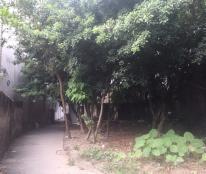 Bán đất tại Đường Lạc Long Quân, Phường Xuân La, Tây Hồ, cách hồ chỉ 2 phút đi bộ